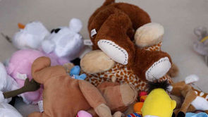 Home Organization: Getting Rid of Toys